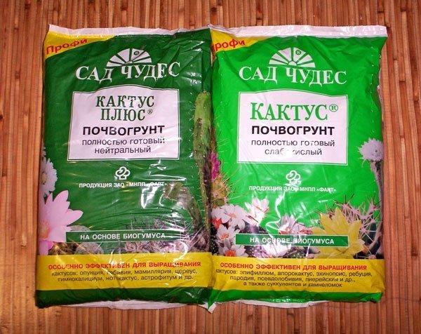 Грунт для кактусов и суккулентов