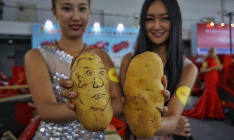 Картофель в Китае