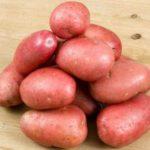 Клубни картофеля Олев