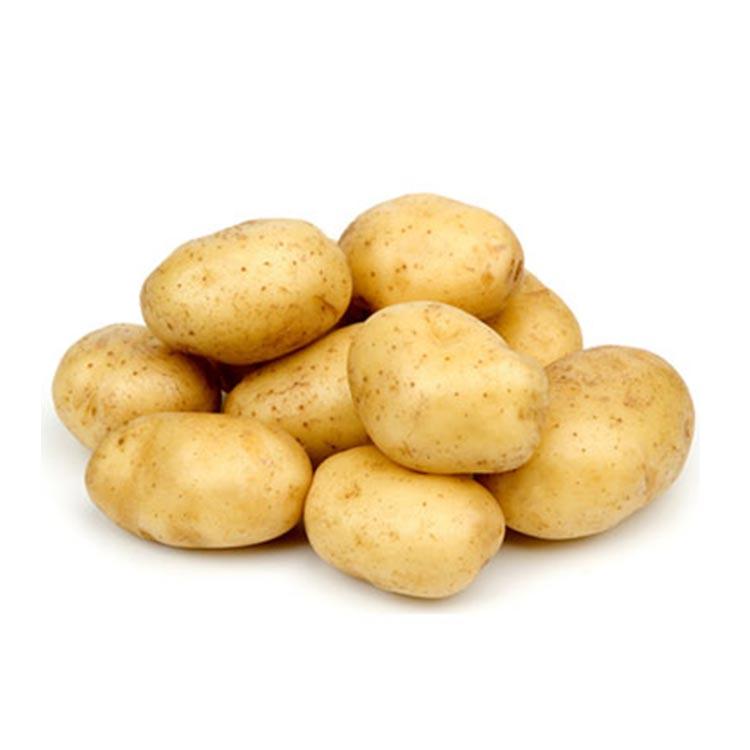 Сорт самого сладкого картофеля Адретта