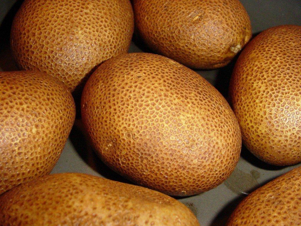 картофель киви в грунте