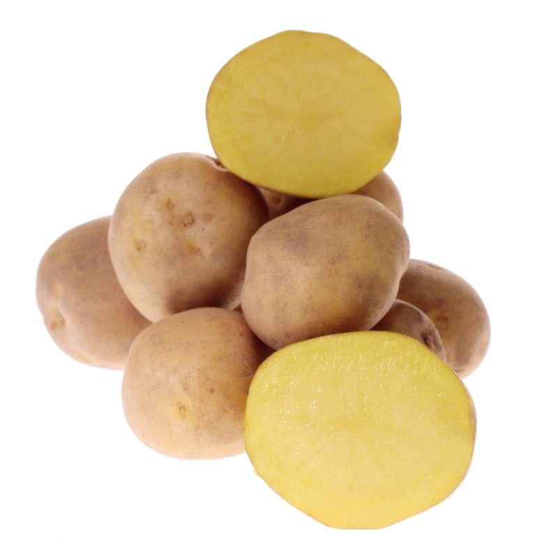 Картофель сорта Метеор в разрезе