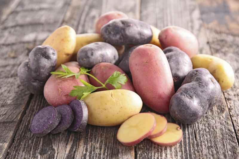 картофель Салют