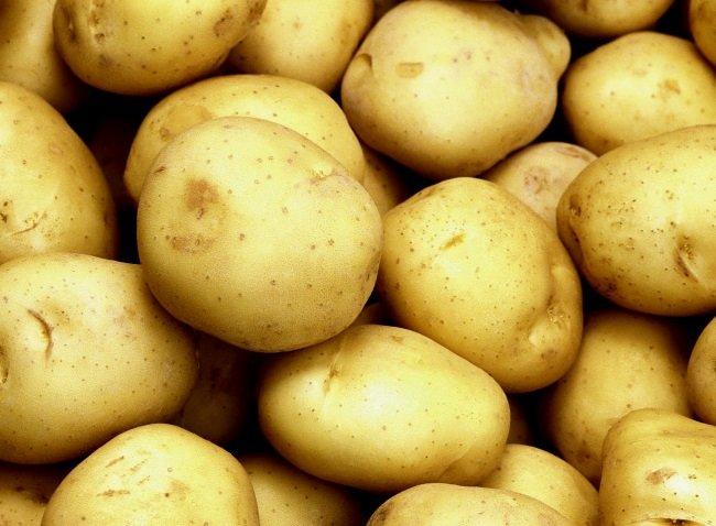 Клубни картофеля Тулеевский крупным планом