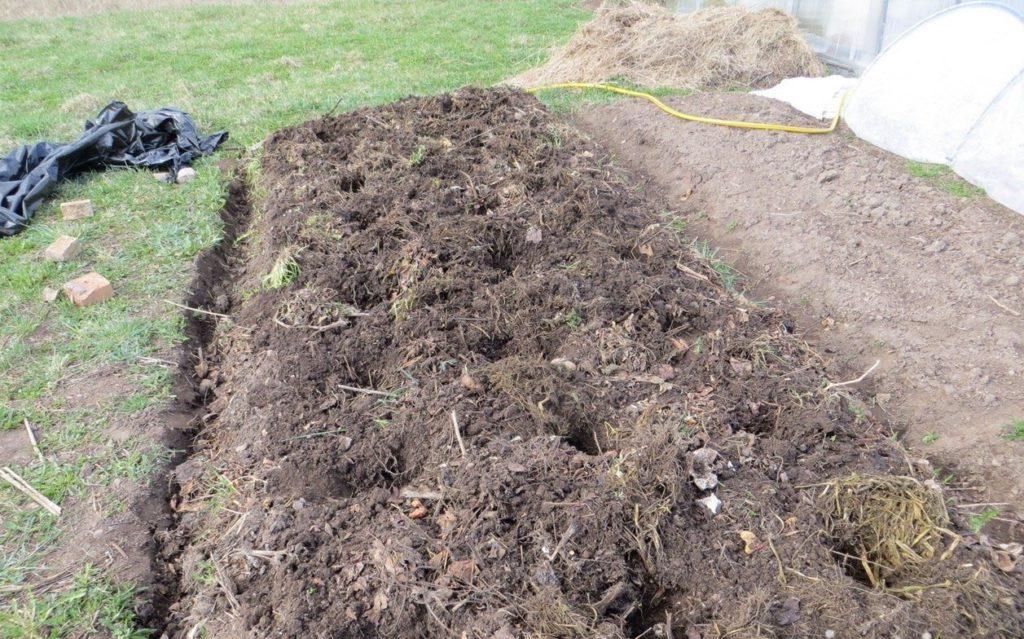 Лунки под посадку картофеля
