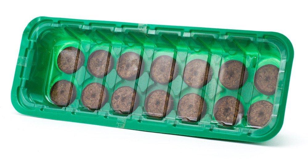 Мини-парник для выращивания рассады в торфяных таблетках