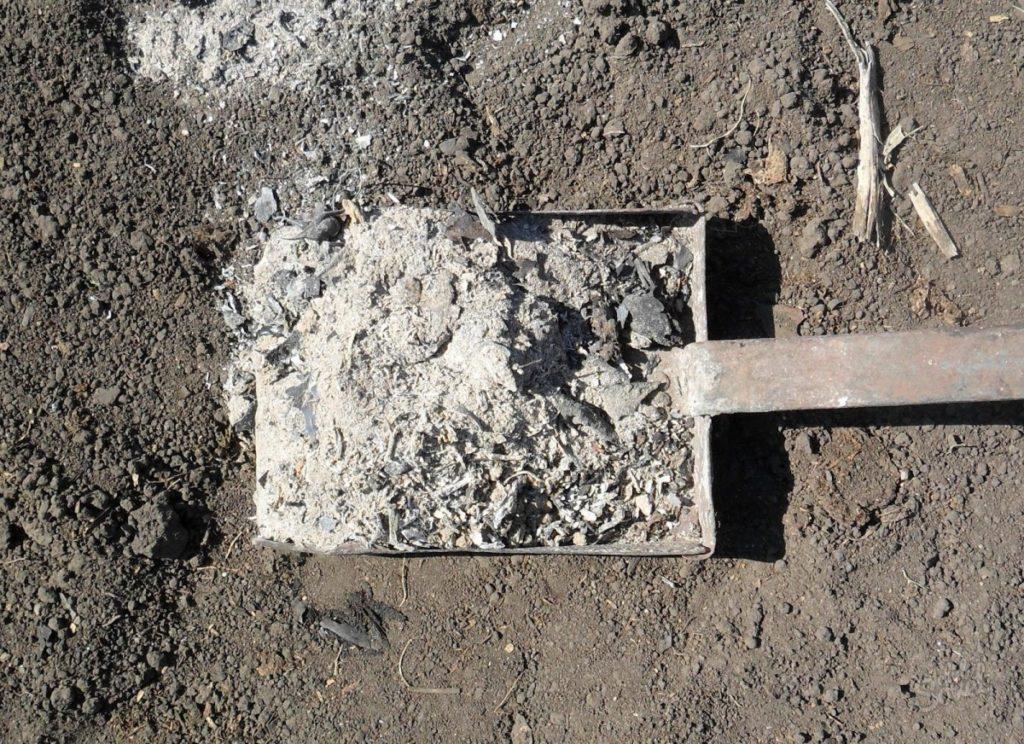 Обработка почвы под посадку Журавинки