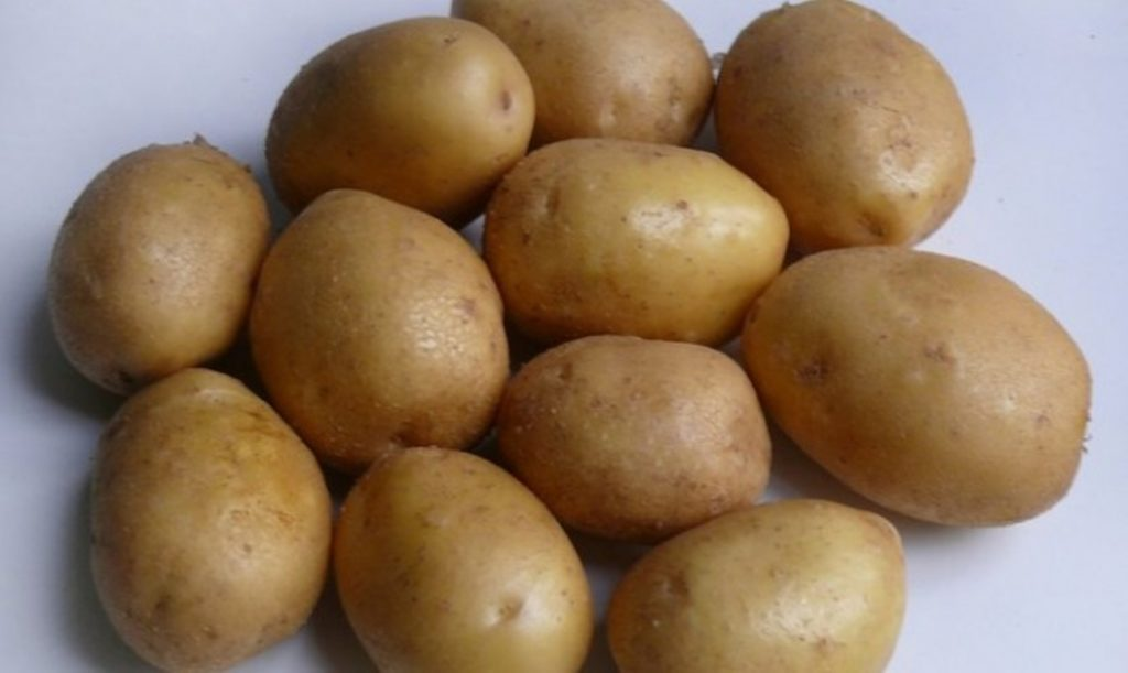 Картофель Джелли 1
