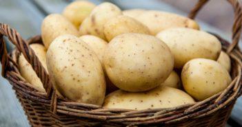 Ривьера картофель