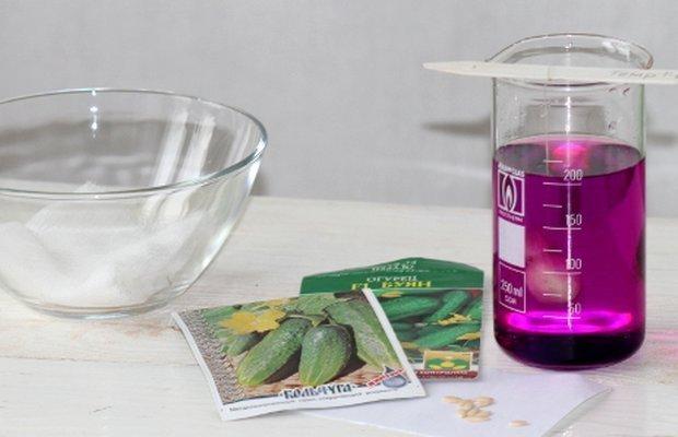 Ёмкости с водой и раствором марганцовки, семена в пакетиках