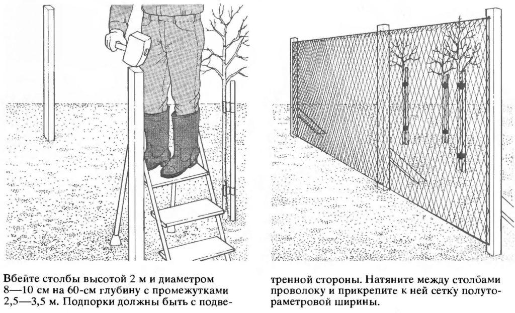 Сооружение ветрозащитного заграждения