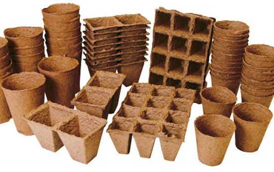 Стаканчики для выращивания рассады арбузов