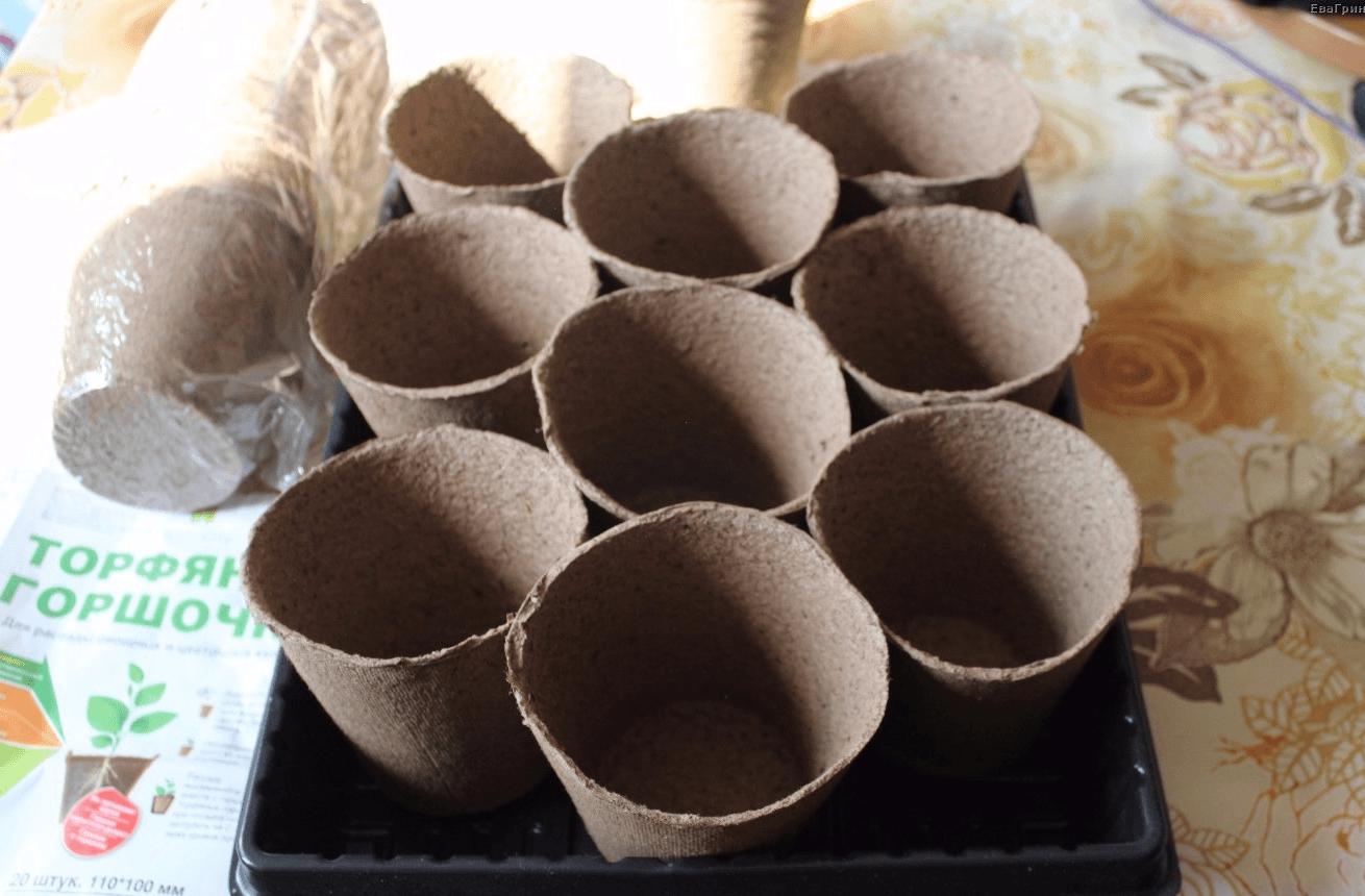 12 способов, как сделать горшочки для рассады своими руками 22