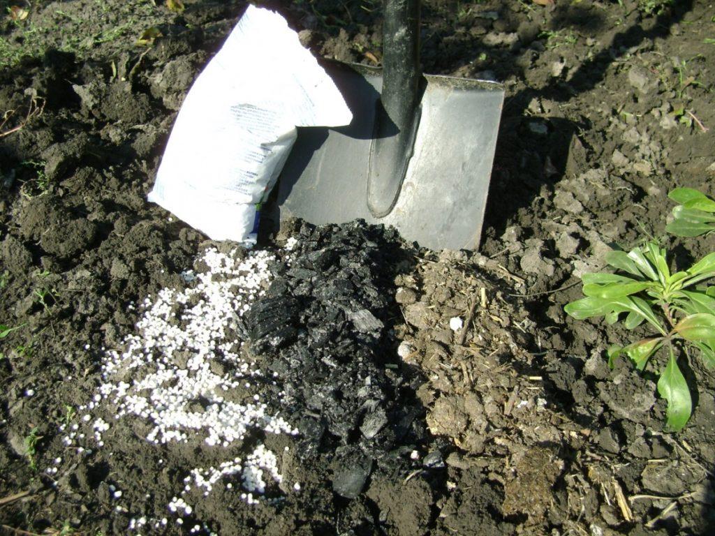 Удобрения в грунте