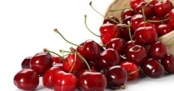 урожай вишни