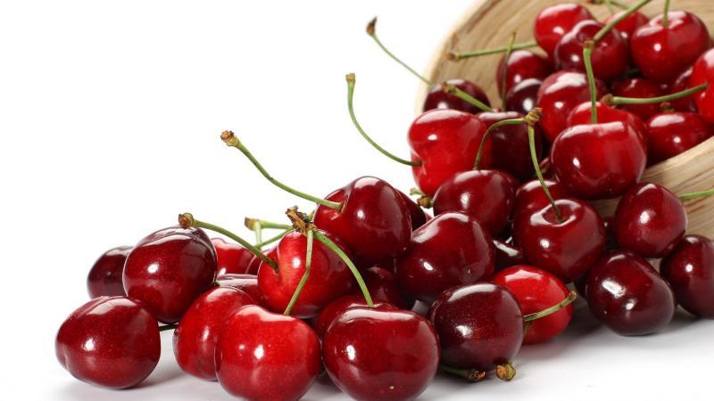 Вишня Владимирская – как получить урожай вкусных плодов