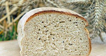 хлеб на даче удобрение
