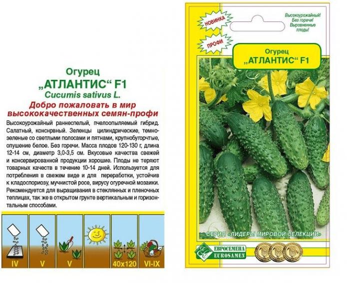 Пакетик с семенами огурцов