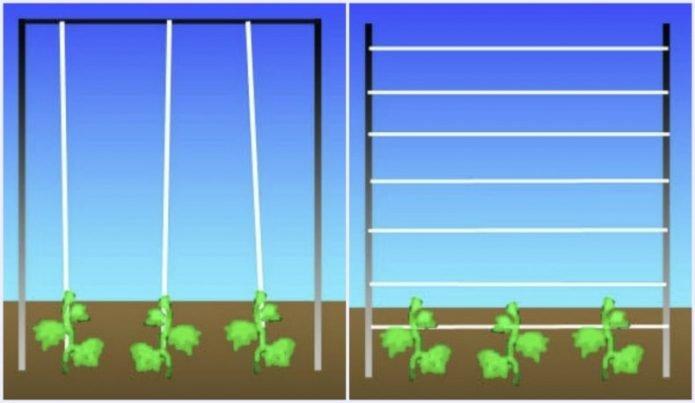 Разница между горизонтальным и вертикальным способами