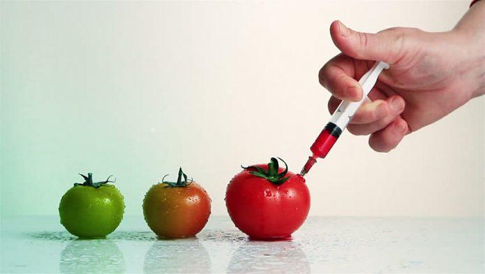 Инъекции в плод томата