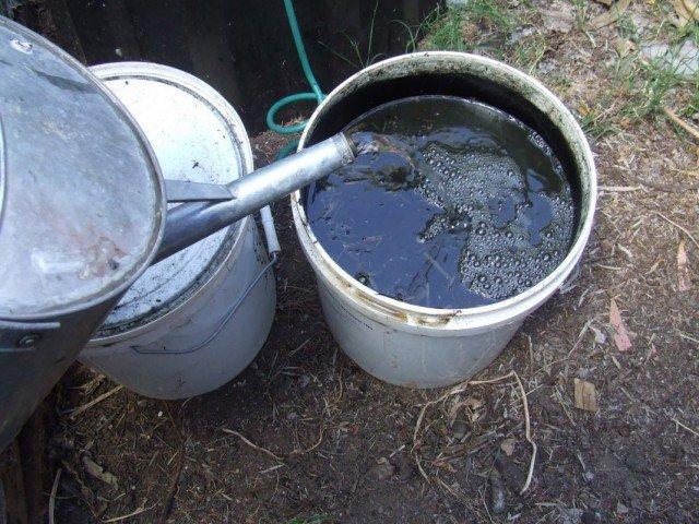 Смешивание куриного помёта с водой