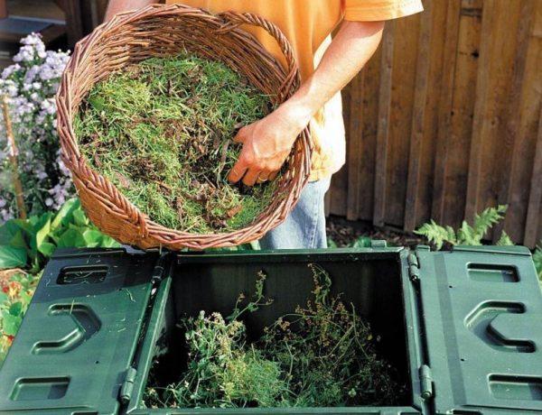 Как сделать компост правильно