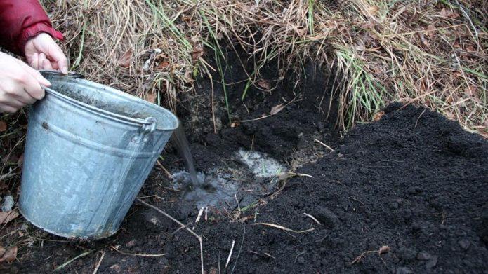 Вода в посадочной яме