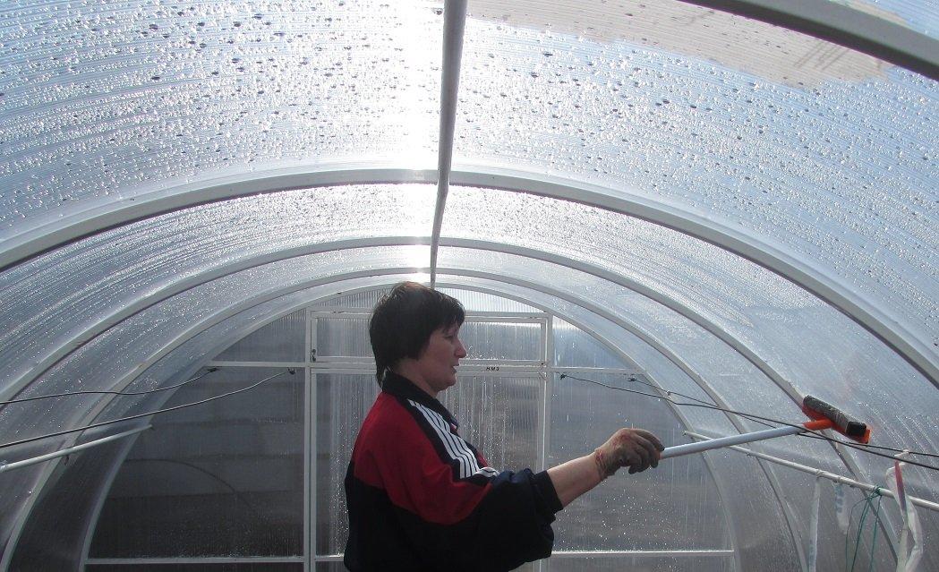 Уход за поликарбонатным покрытием тепличных конструкций