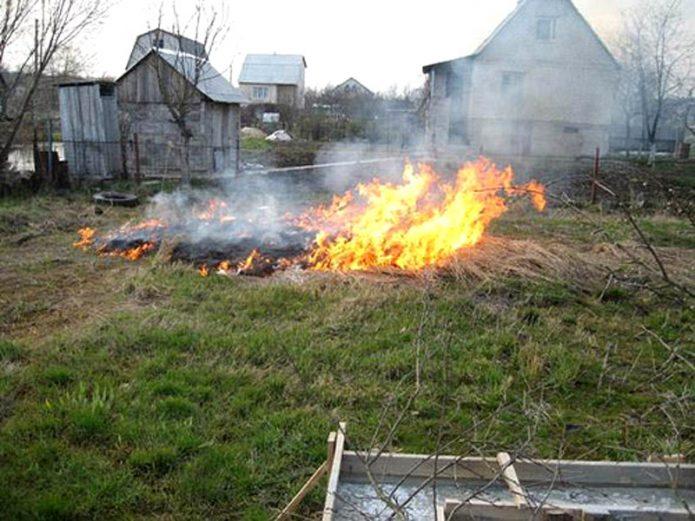 Обработка огнём