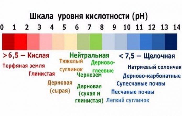 Шкала уровня кислотности почв