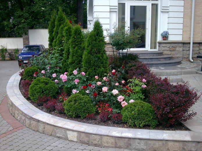 Приподнятая клумба с розами и хвойными