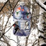 post_5bbd983cb9b04-150x150 Кормушка из 5-литровой пластиковой бутылки