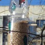 post_5bbd9e1f62608-150x150 Кормушка из 5-литровой пластиковой бутылки