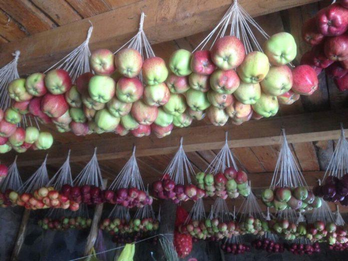 Яблоки на подвесе
