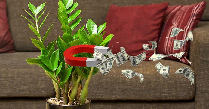 Притягивание денег