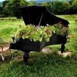 Цветы, растущие под поднятой крышкой рояля