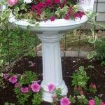 Розовые цветы в изящной раковине и под ней, основание предмета сантехники похоже на античную колонну