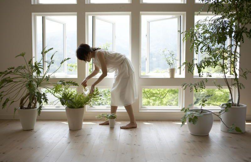 Девушка в комнате с домашними цветами