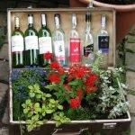 В одном отделении чемодана растут цветы, в другом стоят винные бутылки