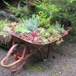 Цветы, растущие в садовой тележке