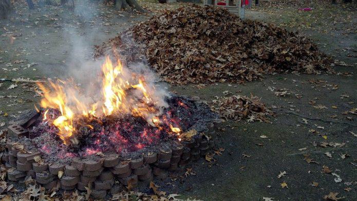 Сжигание листьев