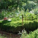 Травяная кровать
