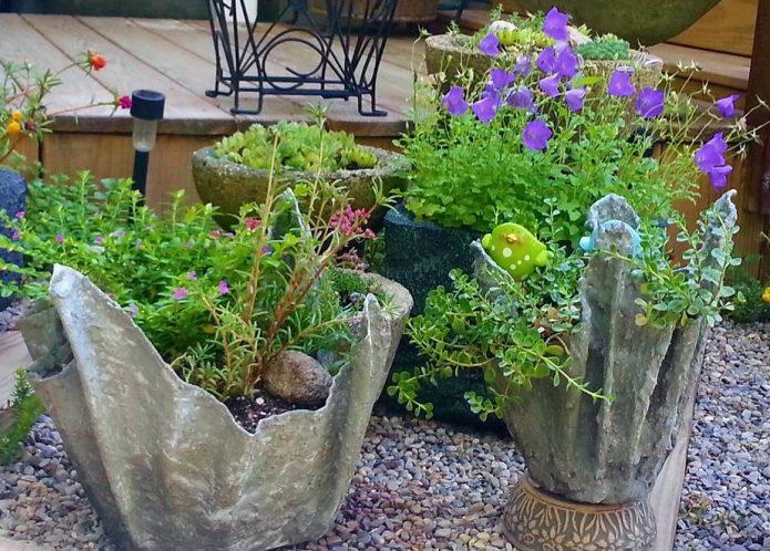 Цветущие растения в горшках в самодельных горшках из цемента