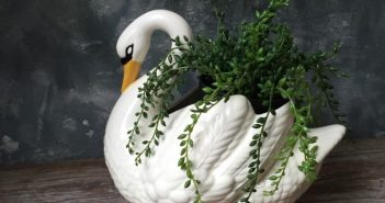 Кашпо-лебедь с ампельным растением