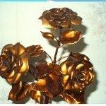 золотые розы