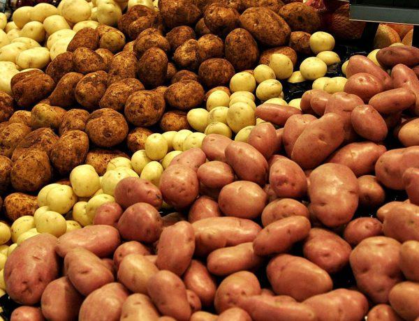 Храним картофель без потерь до следующего сезона