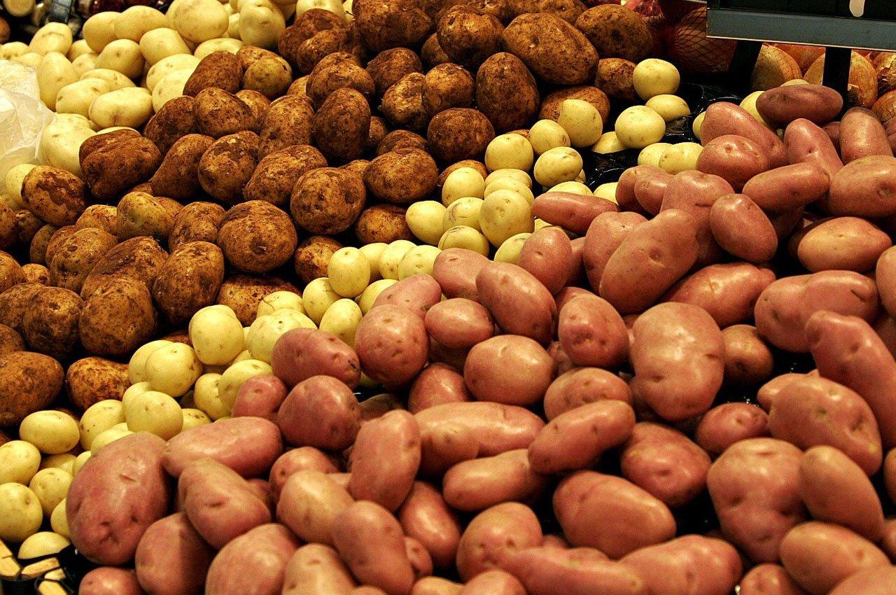 Почему портится картофель при хранении