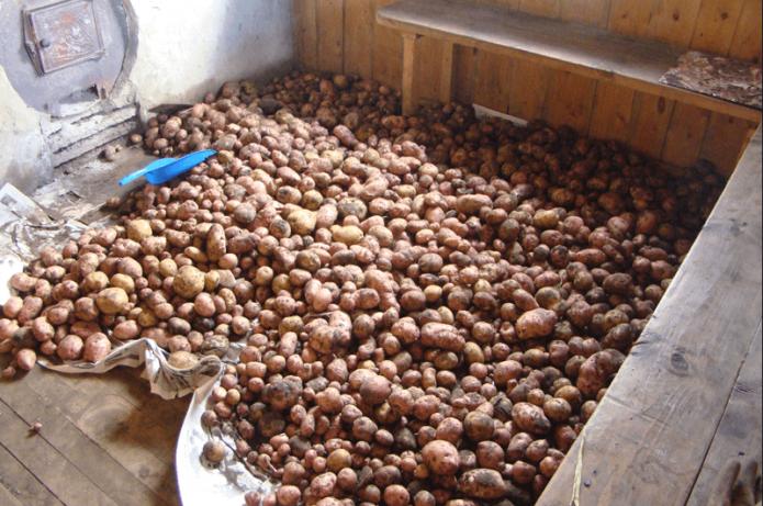 Просушивание картофеля