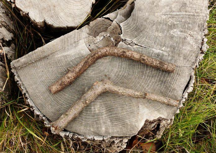 Ветки для ножек Буратино