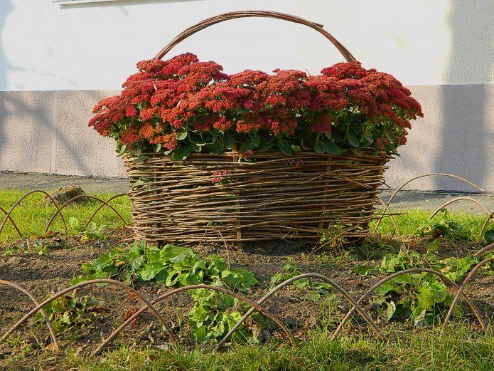 Плетень в виде корзины
